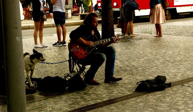 #City #city Life #dog #downtown #Guitar #people #Prague #street Musician #summer