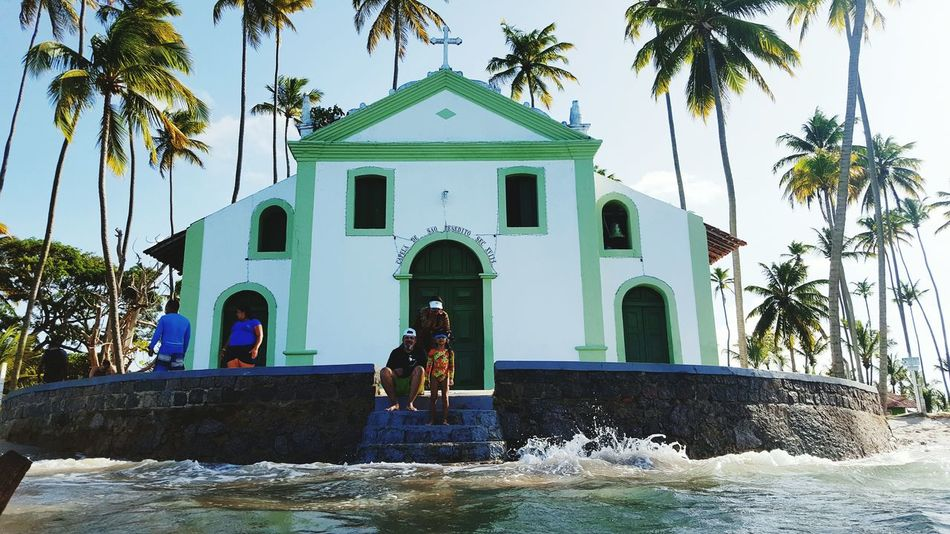 Photodaniellesanson EyeEm Best Shots EyeNatureLover EyeEm Gallery Beauty In Nature Praia Dos Carneiros, Em Tamandaré, Pernambuco, Brasil Praia Dos Carneiros