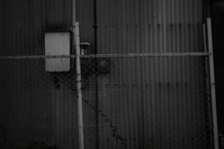 The six sense Monochrome Black And White Photography B & W  Black & White Black And White Blackandwhite X-Pro1 My Photography Fujifilm X-Pro1 Voightlander Nokton Classic 40mm/F1.4 SC Japanese  Voigtlnder Japan Wall Walls Street Photography Rust B & W Photography Rusty Rusty Things