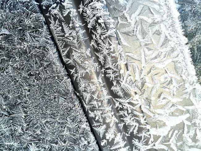Showcase: November Frost Cars