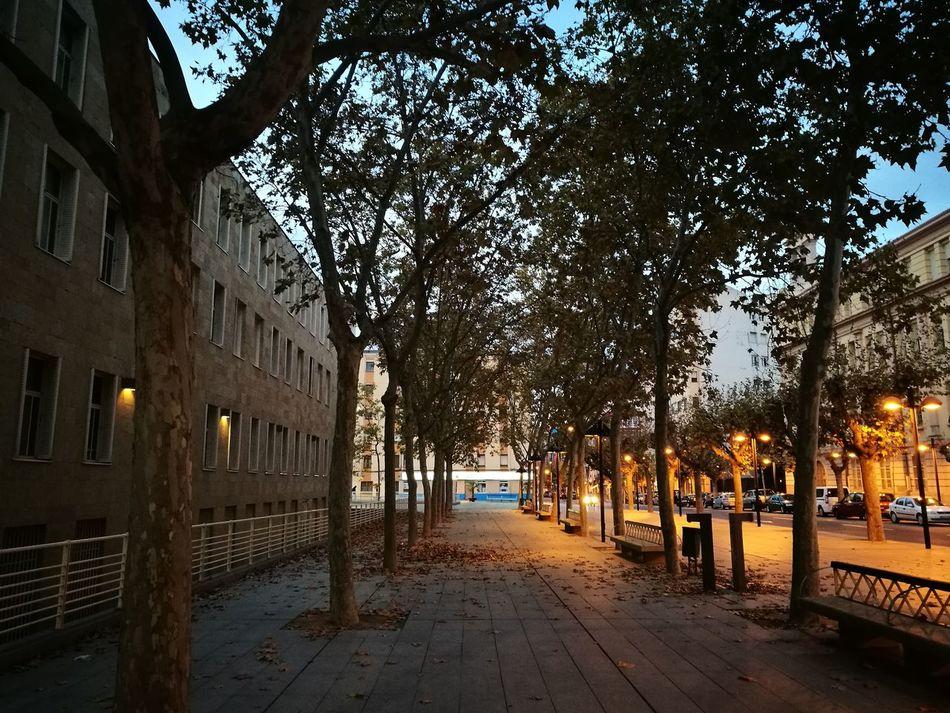 Townhall Logroño