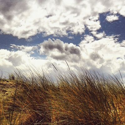 Salento Salento Puglia Italy Beach Sun Sea Wind