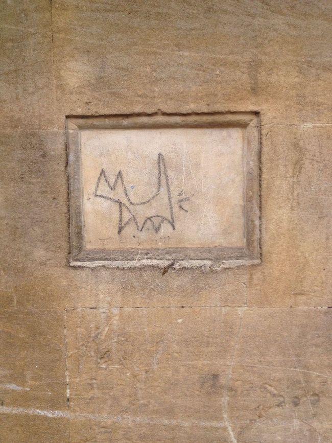 Street Art Streetphotography Street Streetart Streetphoto_bw Streetart/graffiti Dog Frame Frame It! Fart Funny Texture Fun Bath Stone City Of Bath Cat