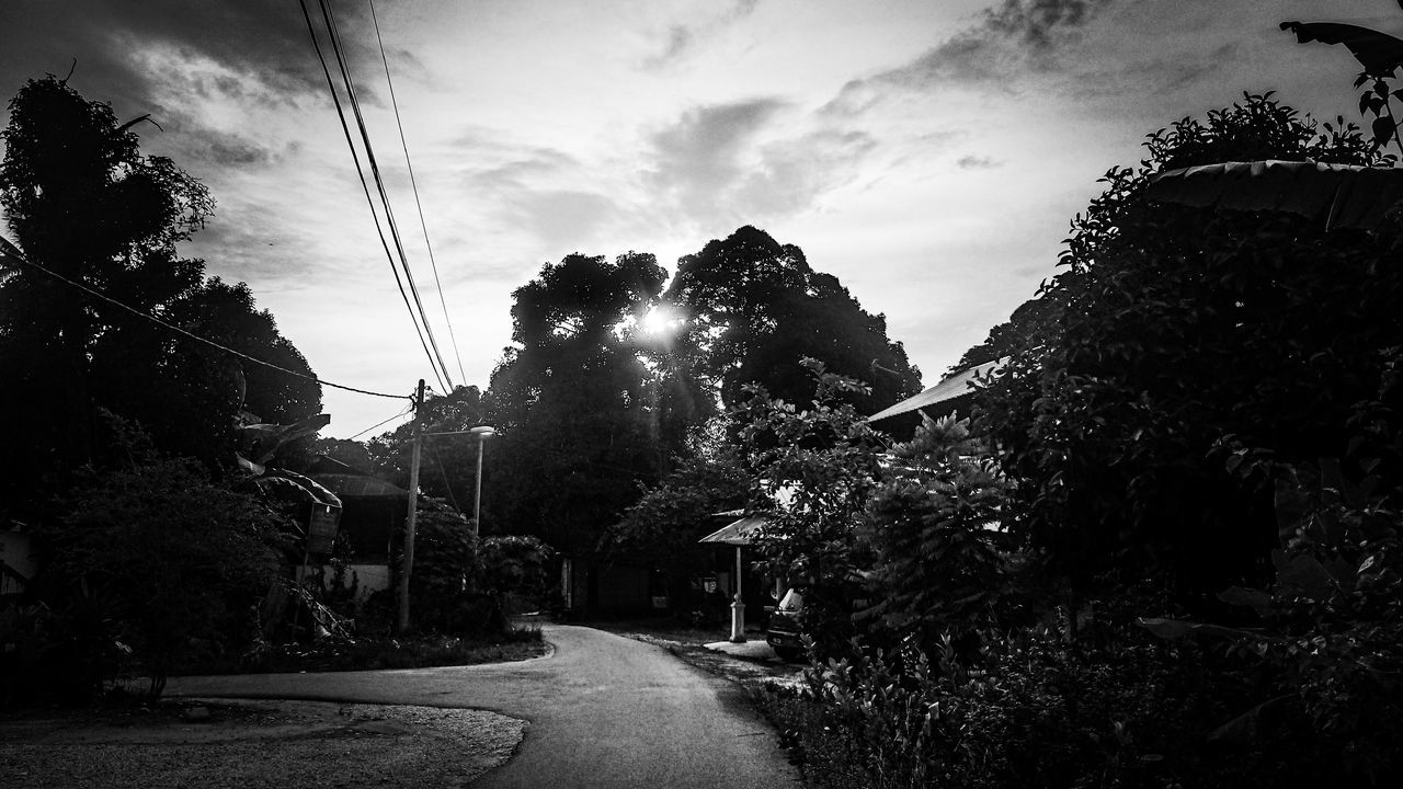 tree, the way forward, sky, cable, transportation, outdoors, road, cloud - sky, nature, no people, growth, day, architecture, built structure, telephone line, building exterior, electricity pylon, beauty in nature, city