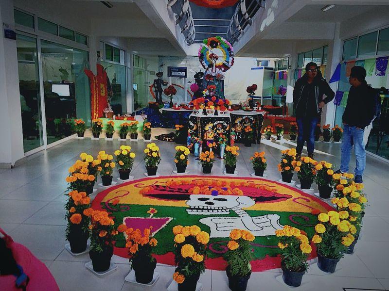 Dia De Muertos México Tradición Cultura Mexicana Catrina Cempasúchil Flower Arte Con Flores