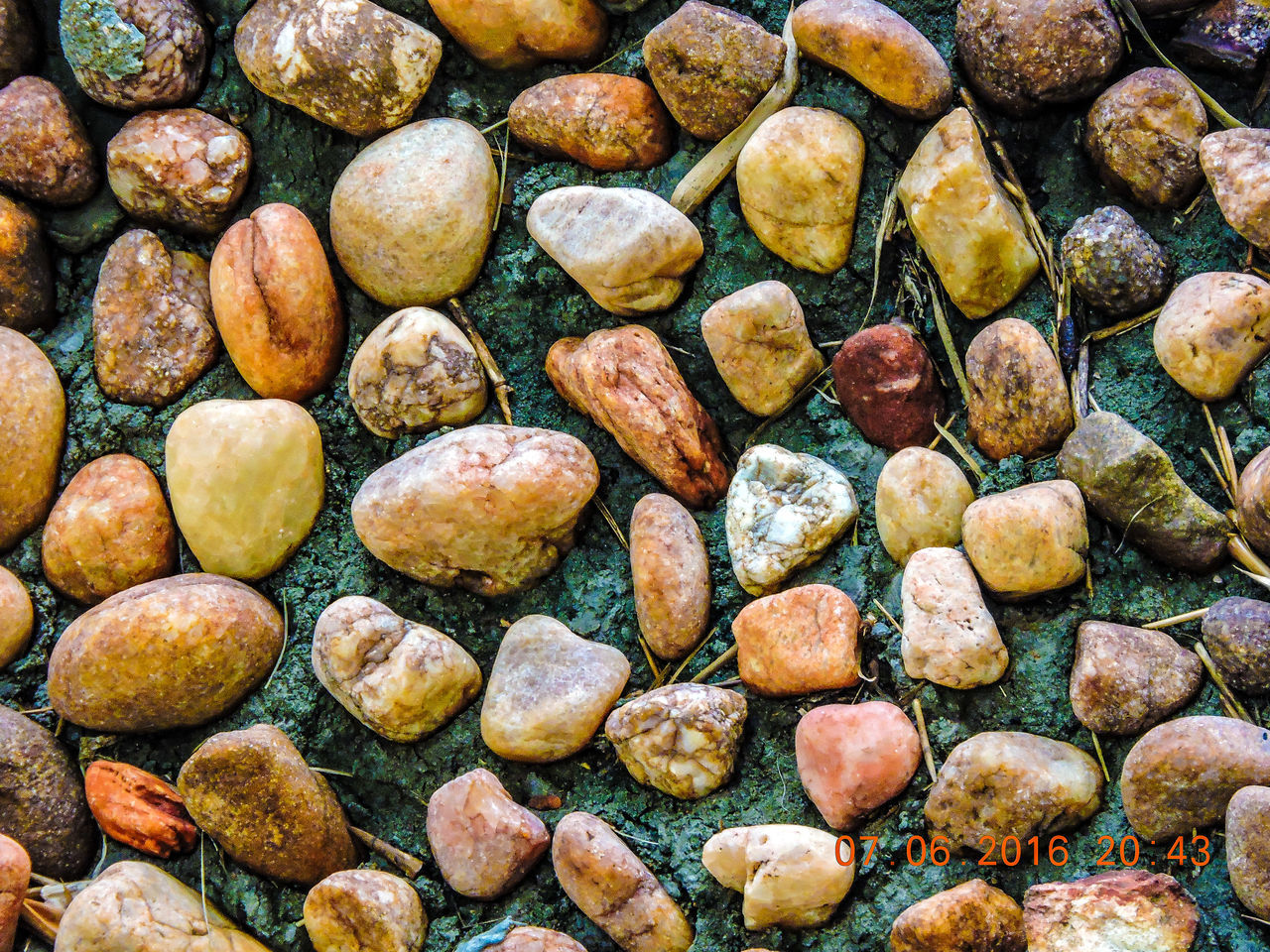 full frame, large group of objects, backgrounds, food and drink, food, abundance, no people, close-up, healthy eating, day, outdoors, nature, freshness, pebble beach