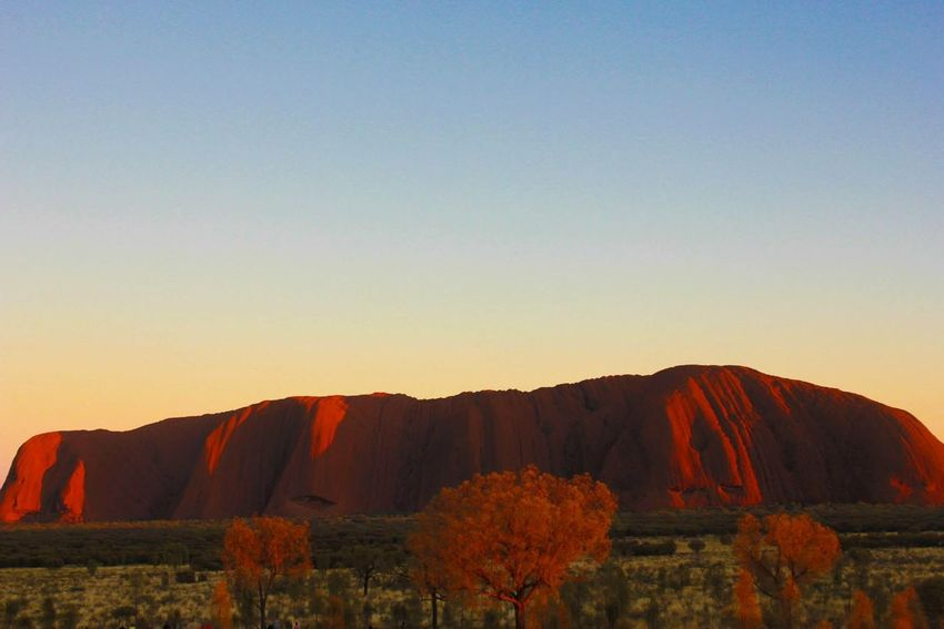 Check This Out Sunrise Desert Colors Uluru Trees EyeEm Nature Lover EyeEmBestPics View Landscape