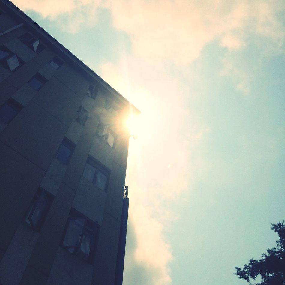 阳光啊,可恶的回南天。😂