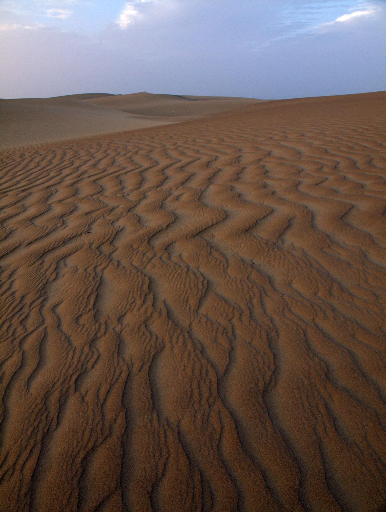 Desesrt, Reservada Laguna de Huacachina, ICA Peru Desert Dry Exploring Geology Landscape Natural Pattern Outdoors Pattern Remote Reservada Laguna De Huacachina Sand Sand Dune