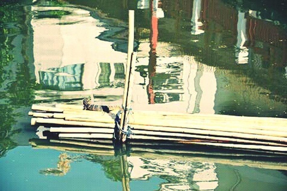Varan Bangkok Tailand Klong Industry Vs Nature River