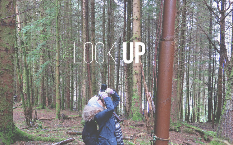 Look Up. Look Up Quote Graphic Design Student College Photography Canon