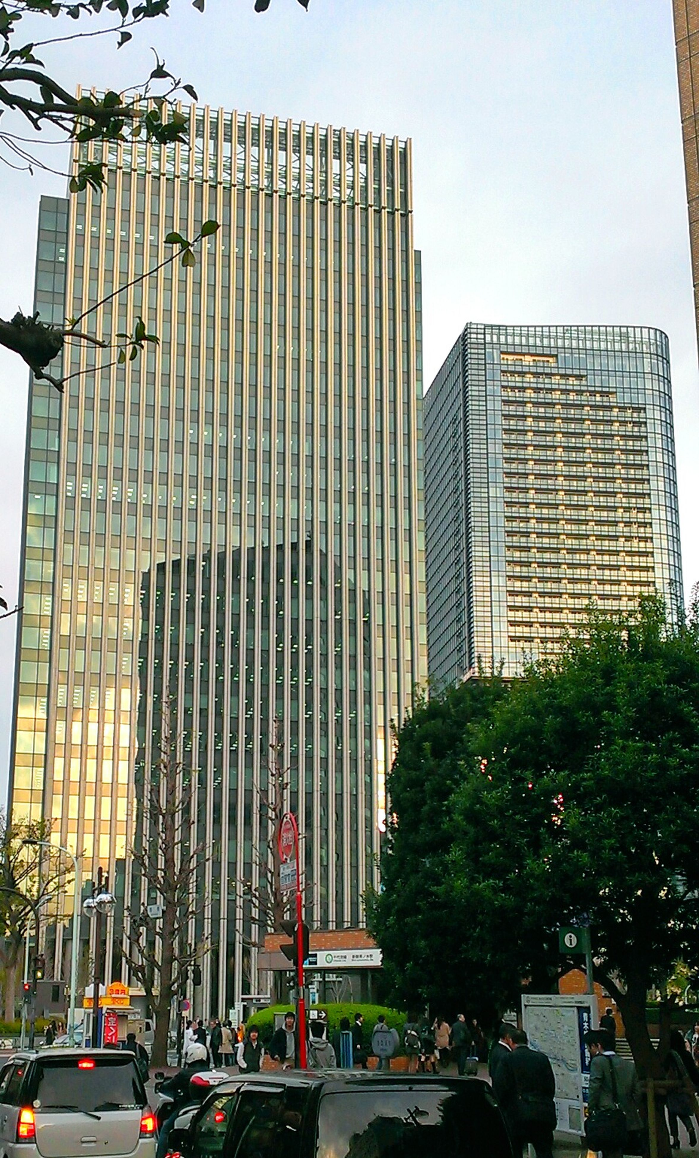 building exterior, architecture, built structure, low angle view, city, modern, office building, building, car, tall - high, land vehicle, tree, skyscraper, transportation, sky, city life, street, clear sky, tower, day