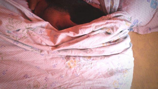 Sleeping Beauty Beaglelove
