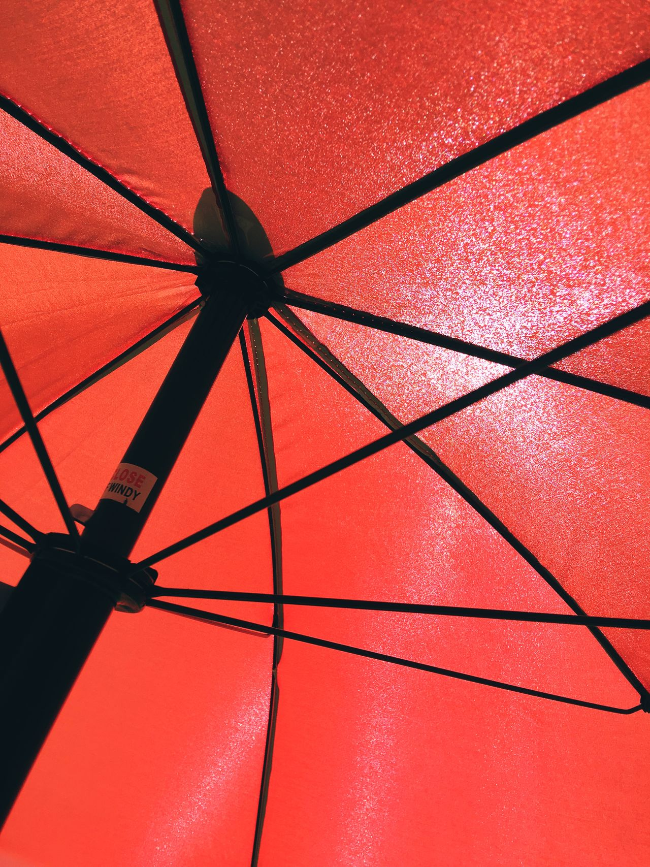 Close-Up Of Red Parasol Back Lit Beach Umbrella Close-up Color Image Day Directly Below Full Frame Low Angle View No People Outdoors Parasol Photo Photography Protection Red Shelter Single Object Summer Sunlight Sunshade Vertical