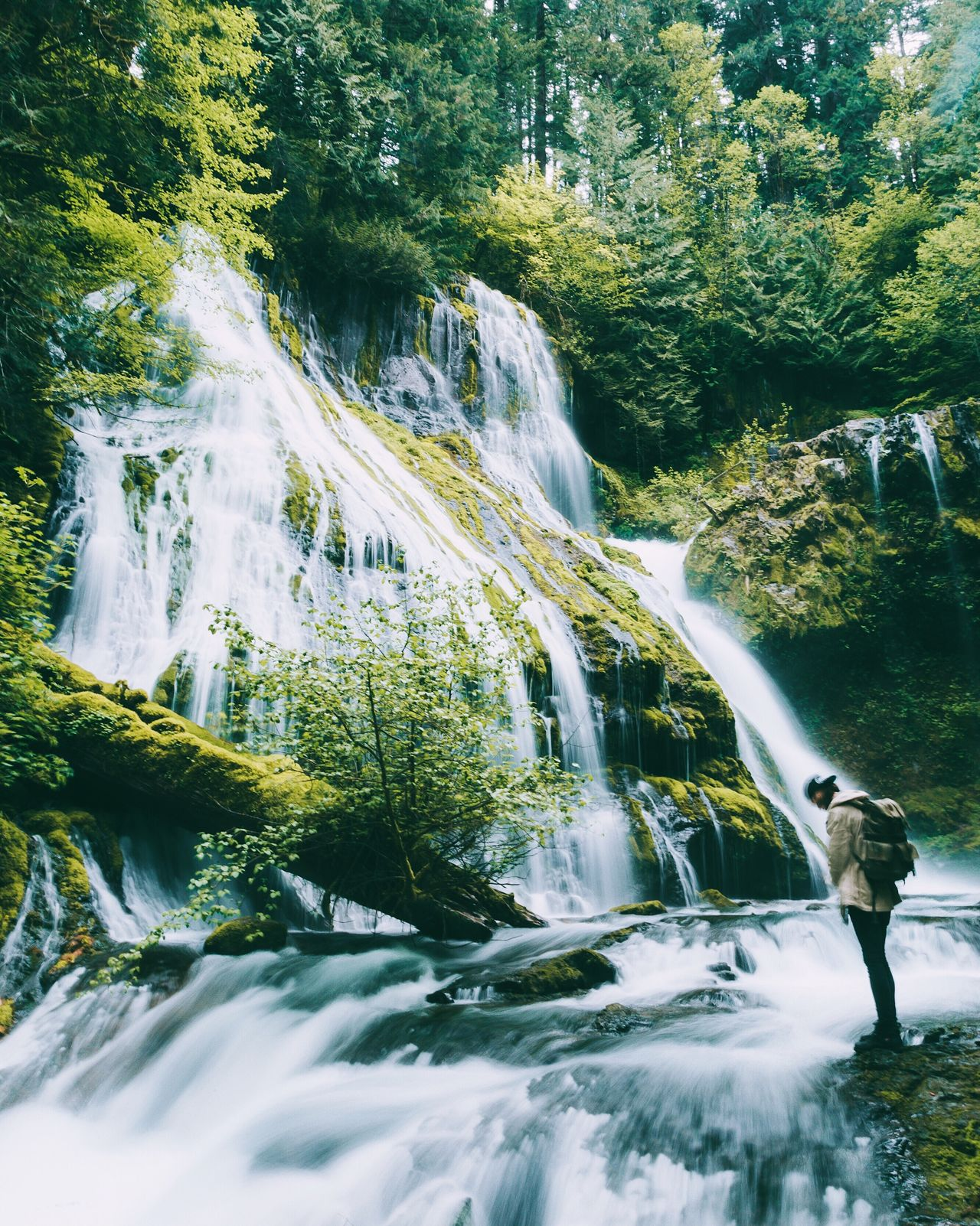 Any plans for the weekend? 😎 Live For The Story Waterfall Water River Motion Beauty In Nature Nature Tree Adventure Scenics Day Outdoors Forest Mountain One Person Young Adult People