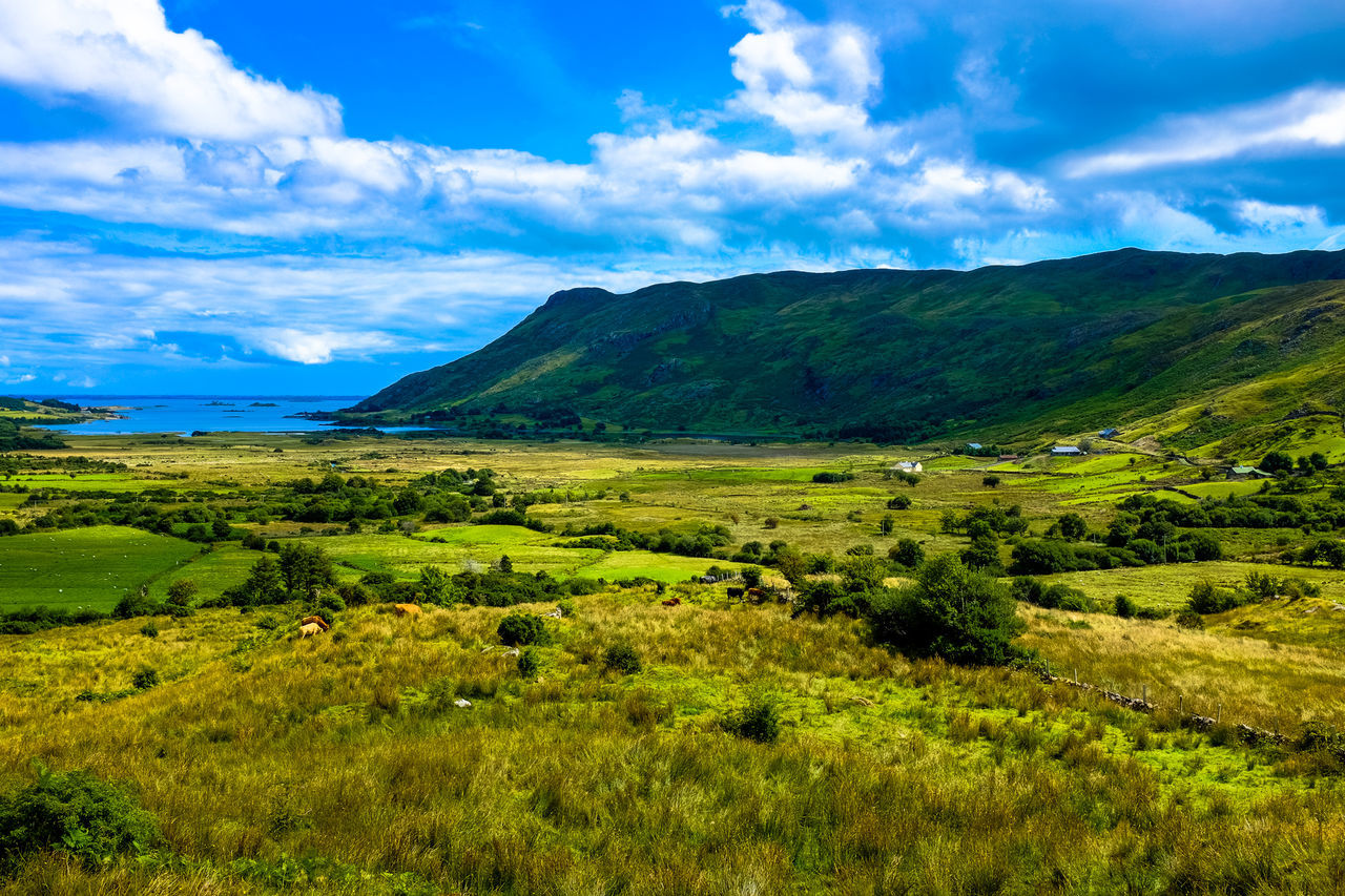 Beautiful stock photos of ireland, Beauty In Nature, Blue, Day, Grass