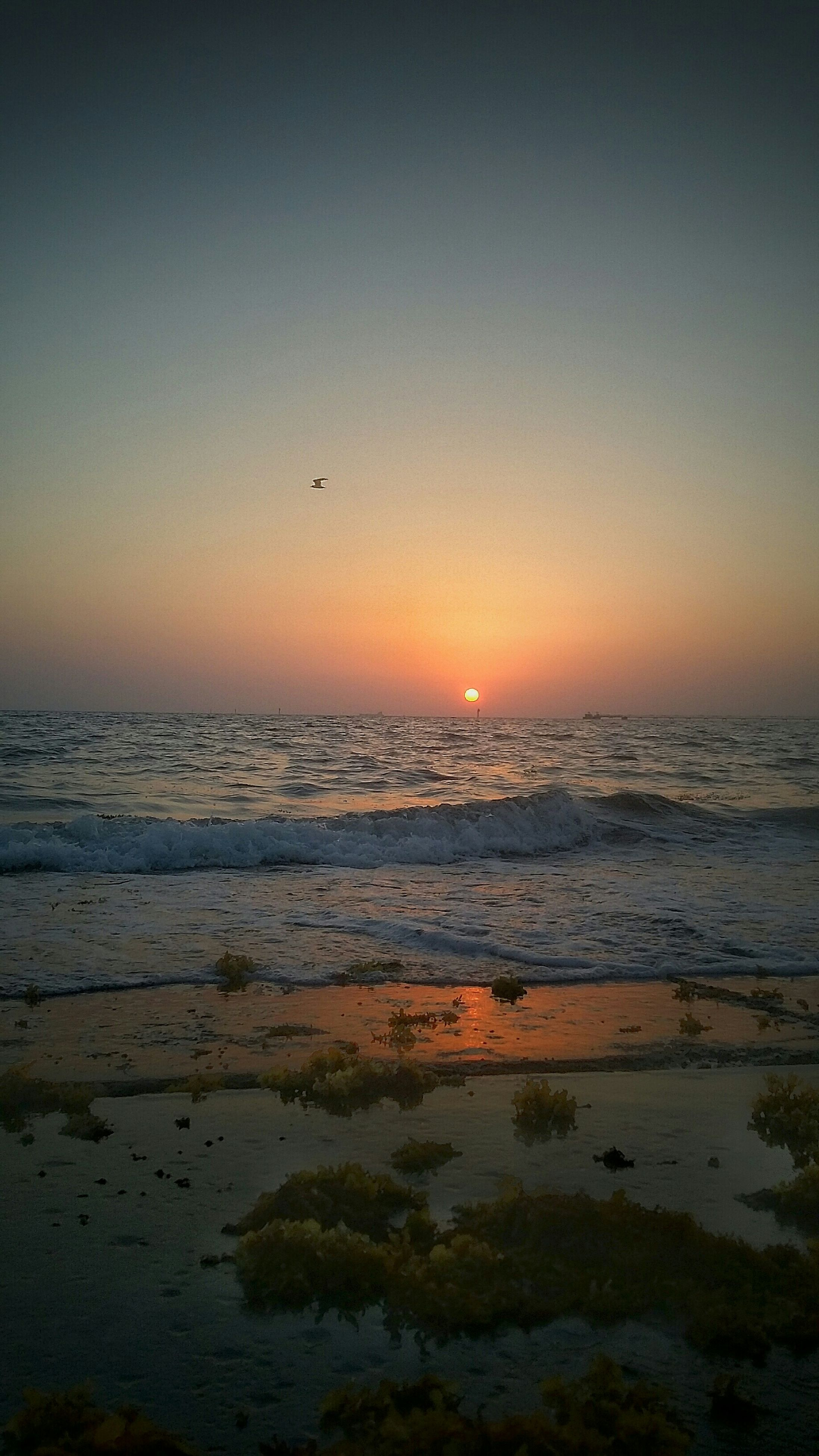 sunset, sea, water, horizon over water, beach, scenics, tranquil scene, tranquility, beauty in nature, shore, orange color, clear sky, copy space, sun, idyllic, nature, wave, sky, silhouette, remote