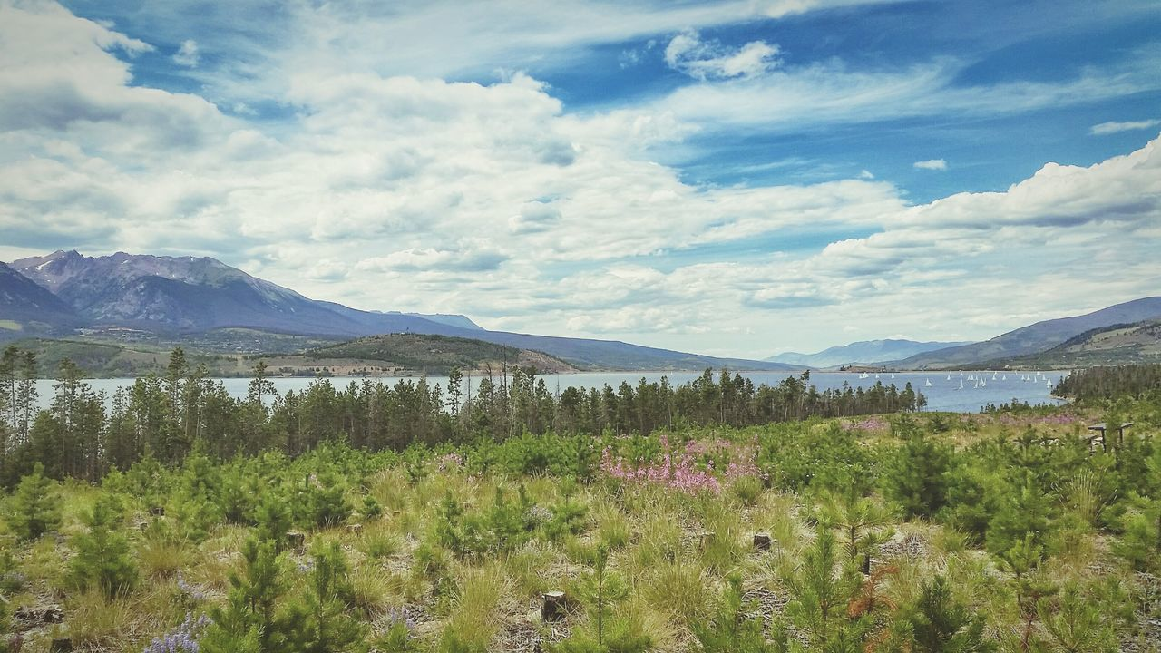 Beautiful Day Peace And Quiet Camping Taking Photos COLife Colorado Lakedillon