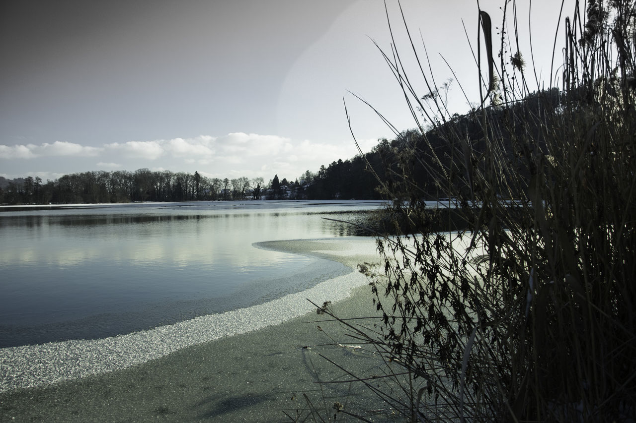 Beauty In Nature Day Ice Lake Nature No People Outdoors Sky Tree Water Winter Wonderland