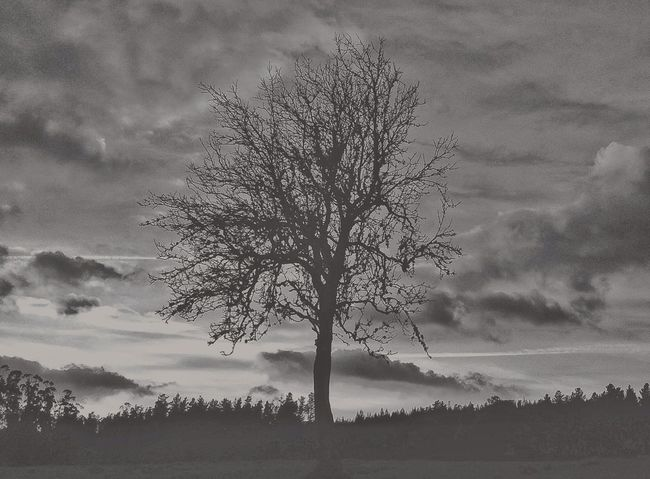 Streetphotography Blackandwhite Landscape Eye4photography