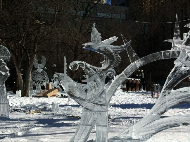 Flying ice fish! Art Ice Freezing Cold