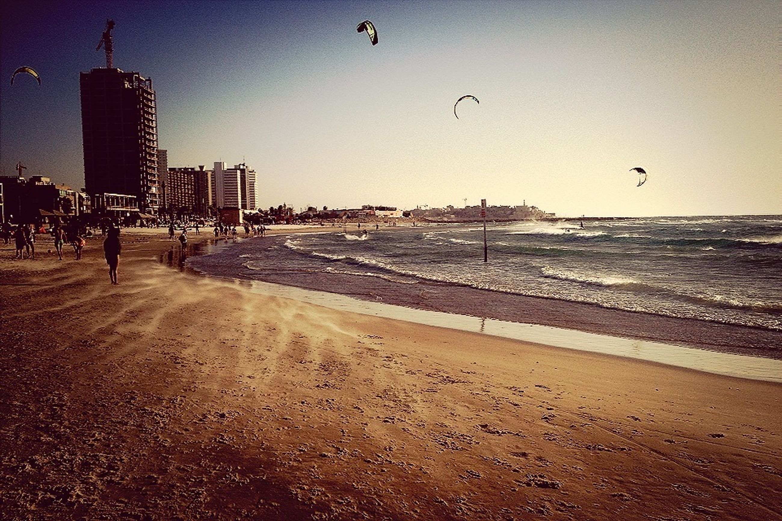 beach, sea, bird, flying, water, shore, sand, animal themes, animals in the wild, horizon over water, wildlife, clear sky, seagull, built structure, wave, building exterior, architecture, incidental people, sky