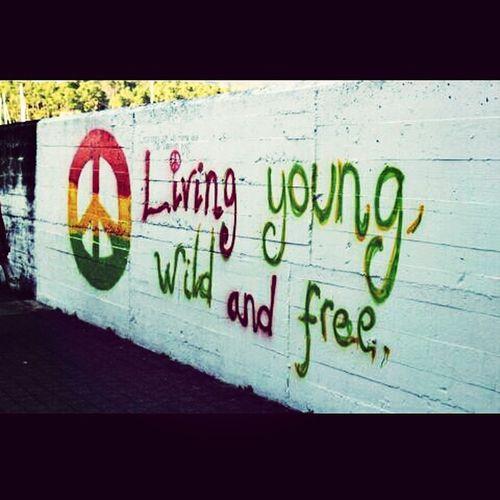 YWF Enjoying Life