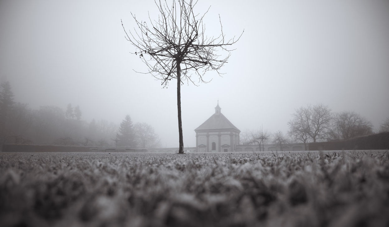 Bavaria Bnw Fog Foggy Weather Grey Day Grey Sky Ground Level View Hoarfrost Kloster Holzen Tree The Great Outdoors - 2017 EyeEm Awards