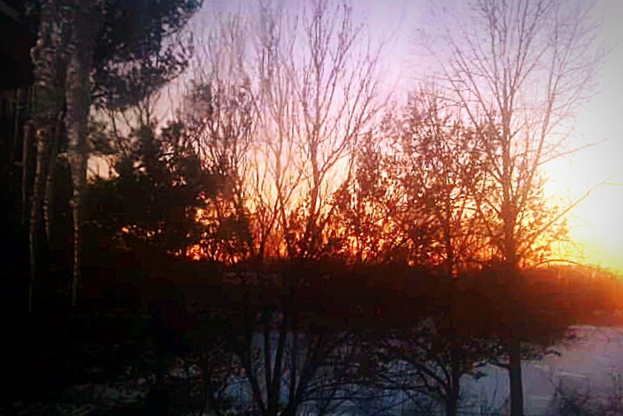Dusk Till Dawn Sunsetporn Sunset_captures Sunsets Sunrise N Sunsets Worldwide  Snowfall Icycles Icy Window EyeEm Nature Lover Nature Photography The Great Outdoors With Adobe Nature Diversities Baltimore, MD