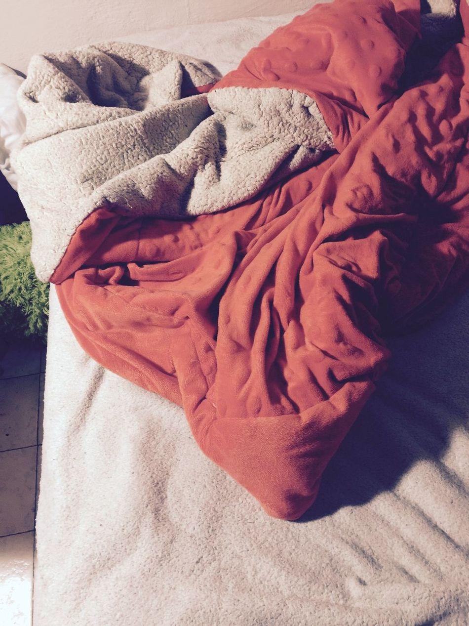 Close-up Day Outdoors Rosé Cama Dormir Sleeping