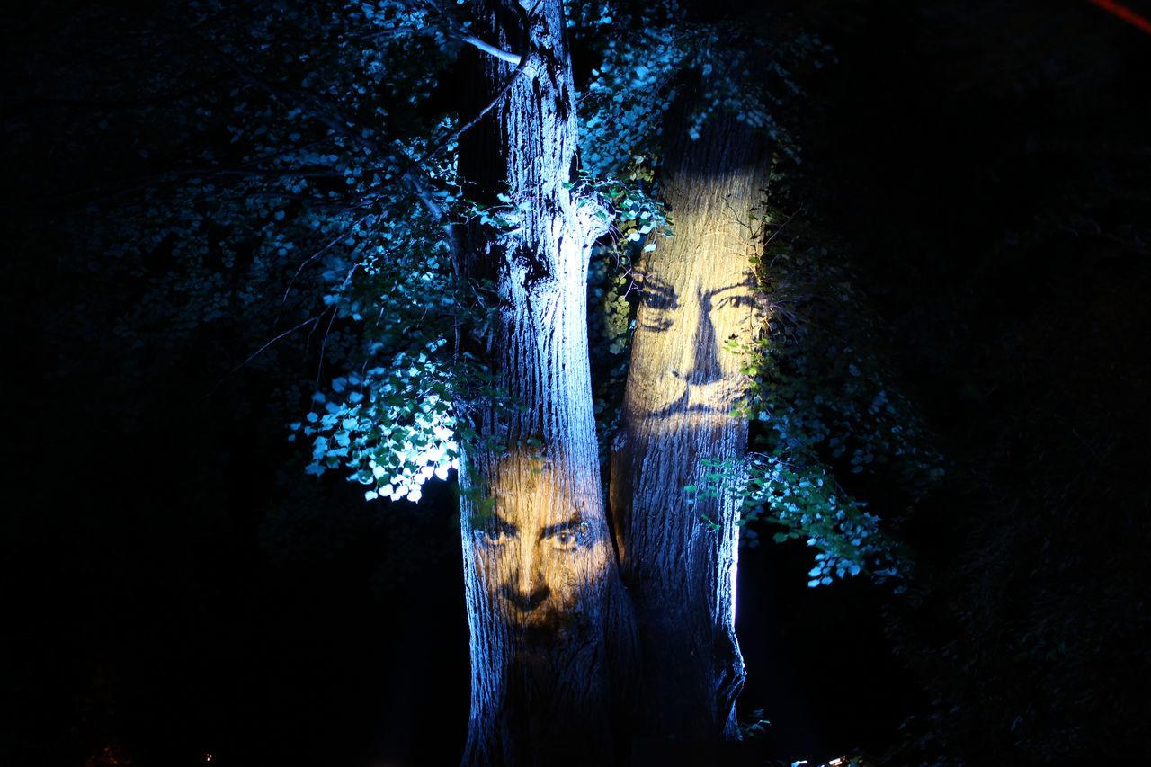 Art Blue Trees Dark Darkness And Light Faces On Trees Illuminated Illumination Installation Art Light Night Tree Trunk