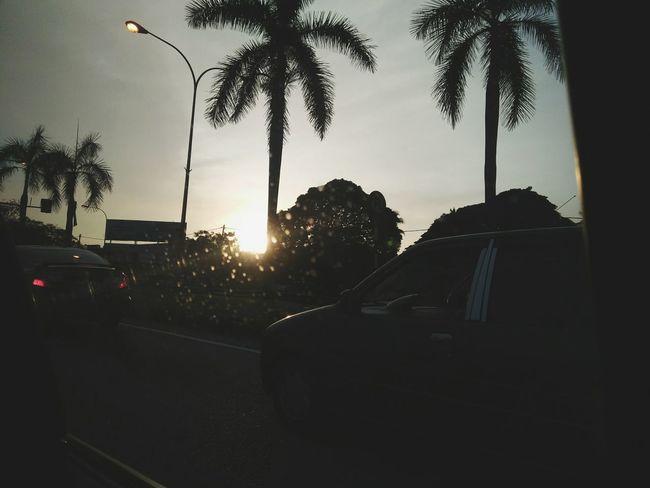 Palm Tree Car Land Vehicle Tree Outdoors City Life Sky Sun Morning View Sunset Scenery First Eyeem Photo