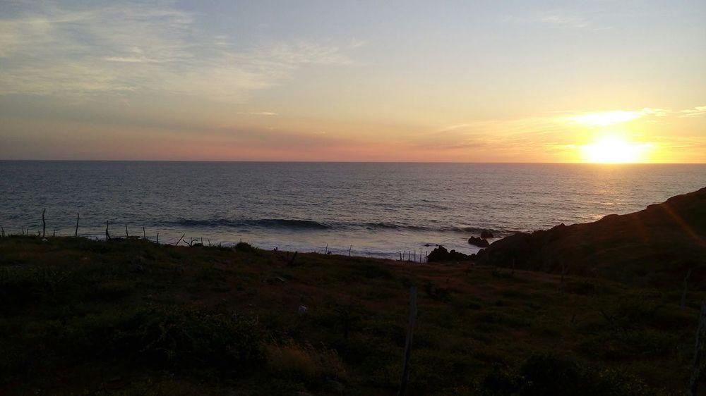 One Wild Night BCS Mex El Pescadero Loscerritos Into The Wild