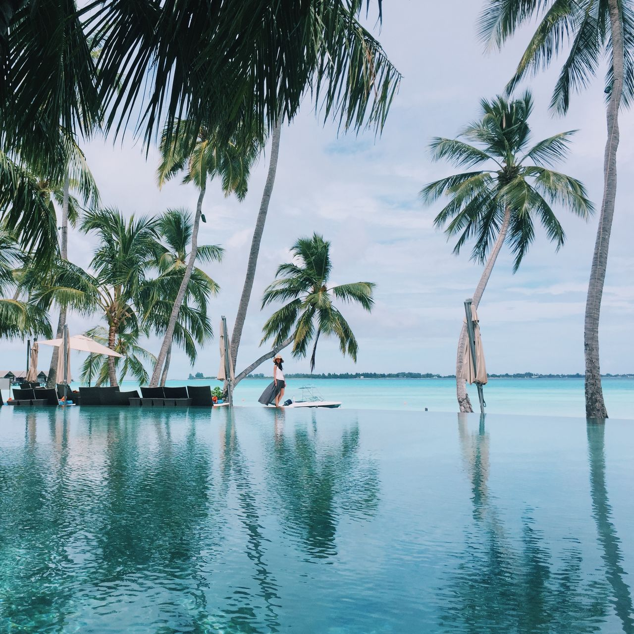 Shangri-La Shangrilamaldives Palms EyeEm Best Shots Vscocam Instagram Follow4follow Relaxing Holiday Travel Photography
