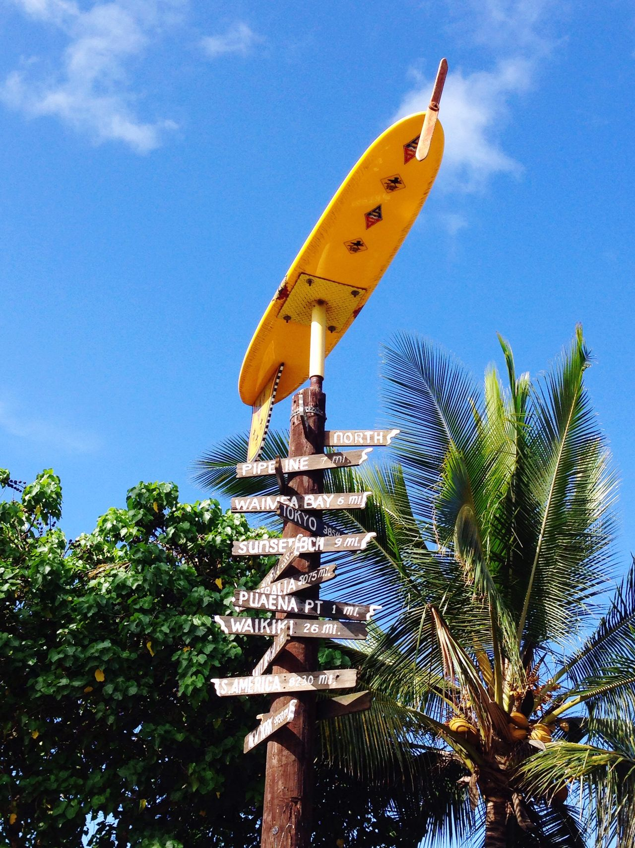North Shore Signs, Hawaii Board Sign Signs Surf North Shore Hawaii Blue Low Angle View Outdoors No People Paths Day Ways Routes
