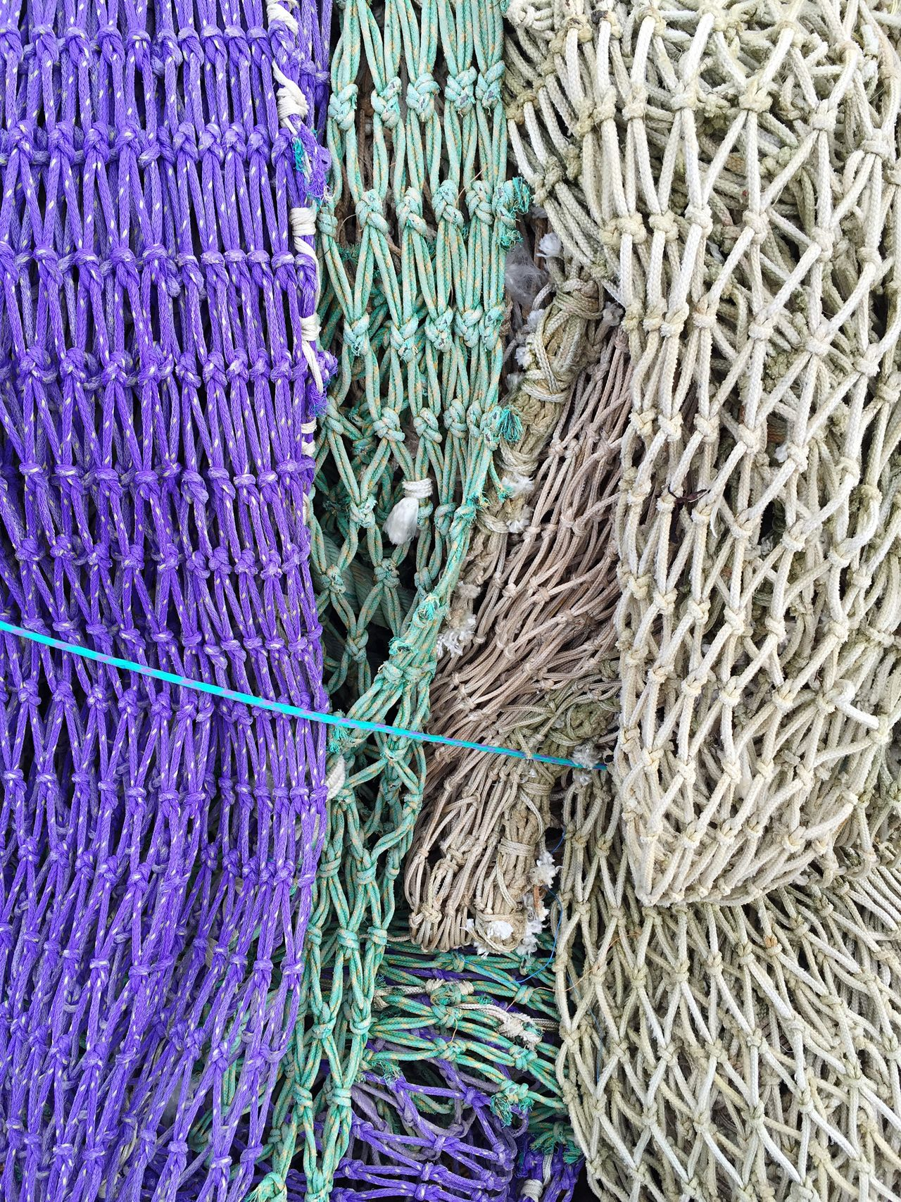 Fishnet Fishing Net Fishing Nets Net Netting Fish Structures Structure Harvest Harvest Time Sea Fisherman Fisher Violet Green Close-up Fishing