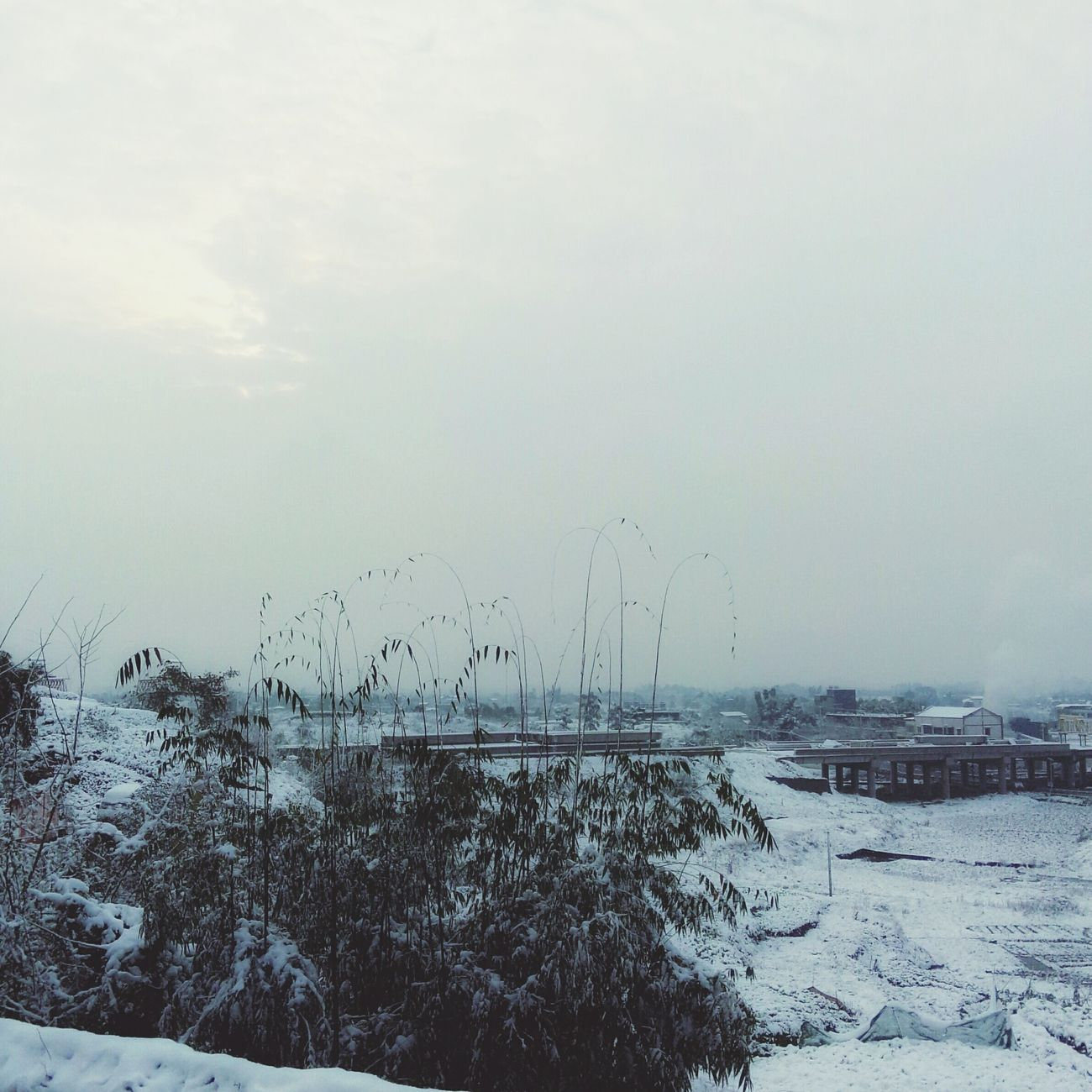 The country was blanketed with snow.Snow ❄ Snowing Day Winter Nature First Eyeem Photo