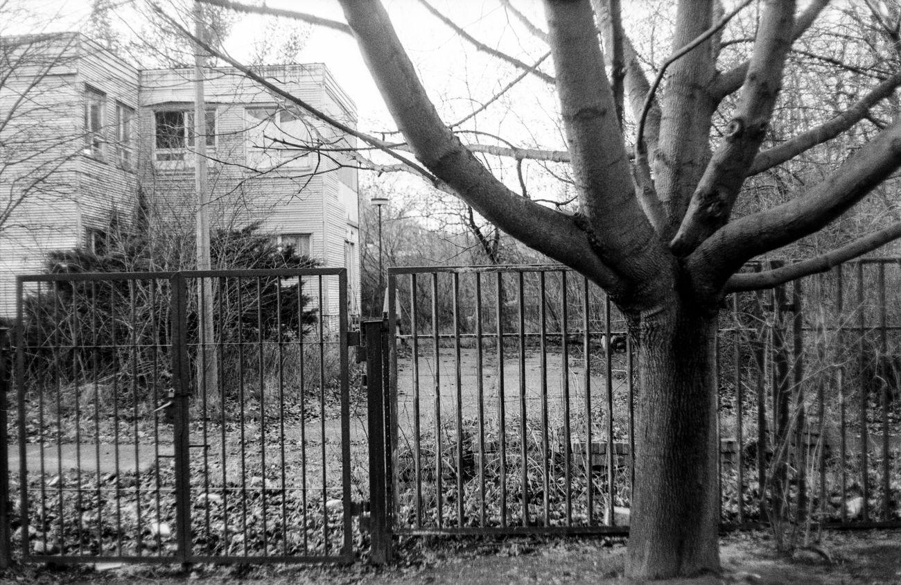 Location: Albert-Blau-Straße Praktica MTL 5 | APX 100 -> 200 | D-76 AgfaPhoto APX 100 (new) Blackandwhite EyeEm Best Shots - Black + White Kodak D-76 Monochrome Praktica MTL 5