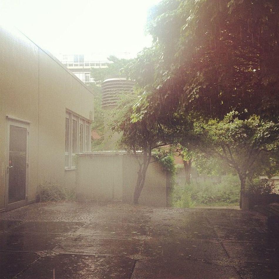 Regen und ich sitze ausnahmsweise mal in der Uni ... Summer Rain Regen Paderborn Instagood Upb