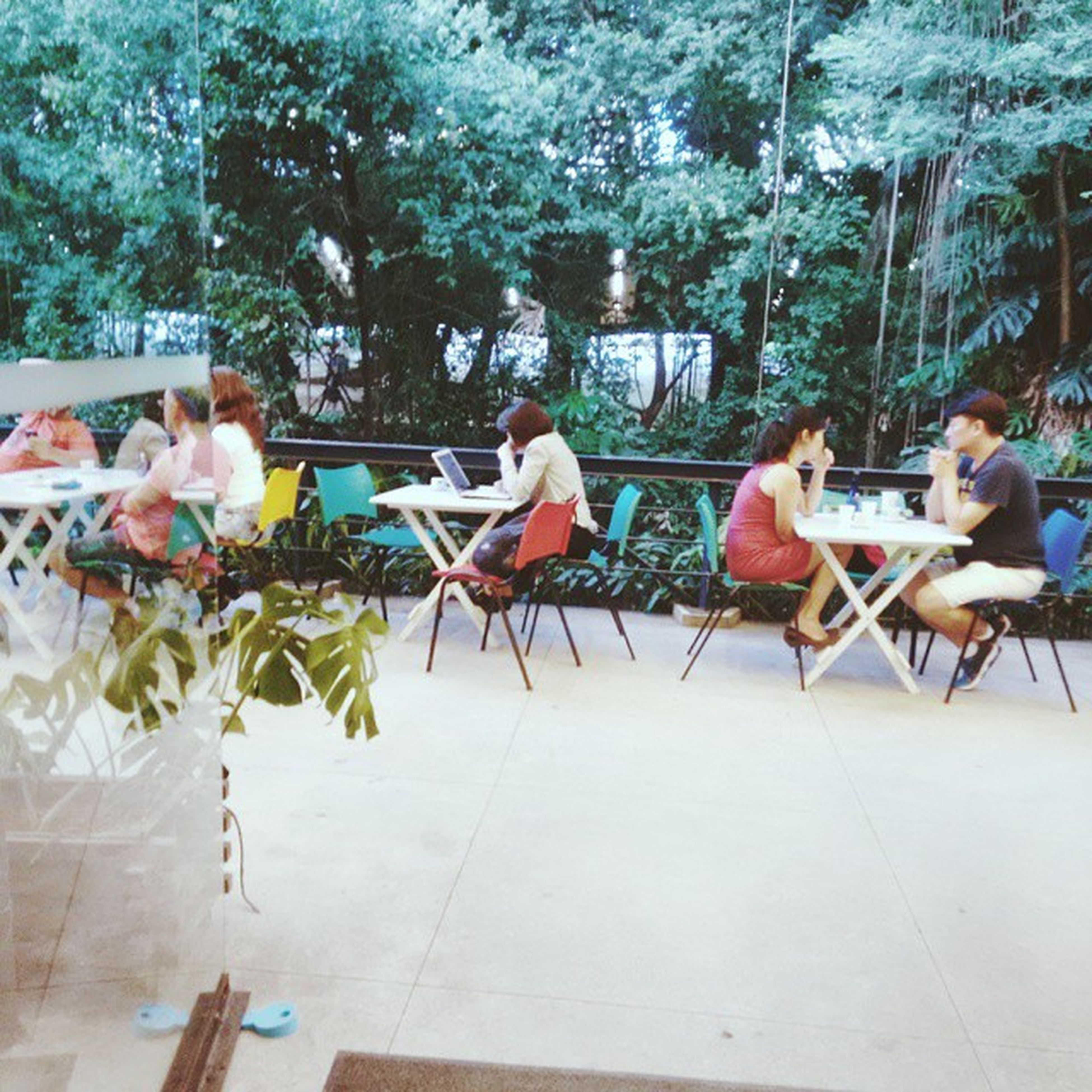 tree, chair, table, relaxation, sitting, leisure activity, lifestyles, person, day, restaurant, sunlight, outdoors, bench, incidental people, nature, men, seat, park - man made space