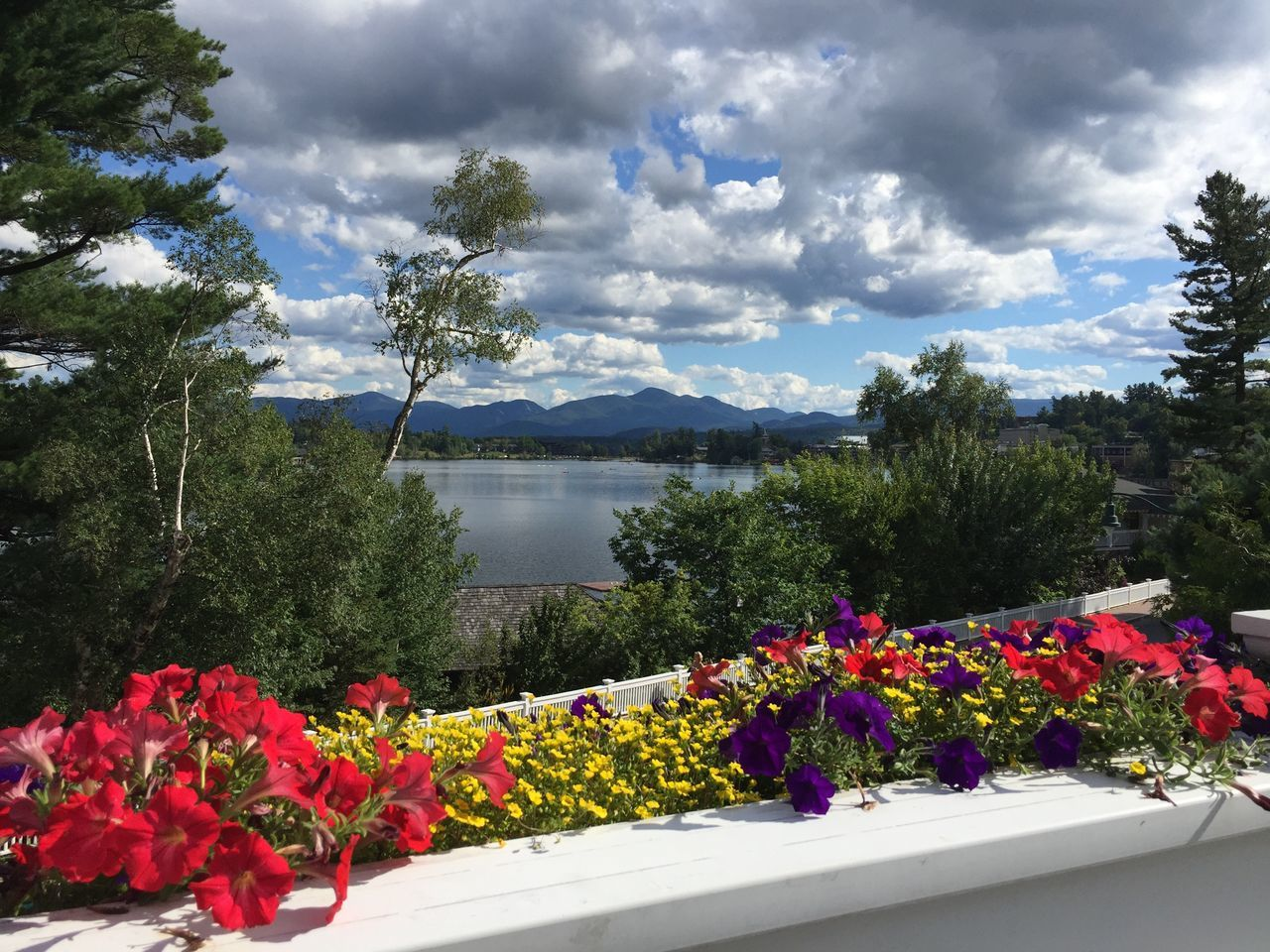 Mountains Adirondack Mountains Mirror Lake Lake Placid Water View Flower Beauty In Nature Nature Growth Sky Tree Scenics Mountain Plant Tranquility Outdoors No People Day Tranquil Scene Cloud - Sky Freshness Fragility Water Bougainvillea