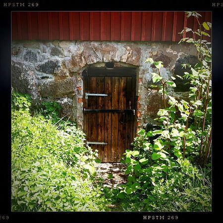 Rustic Swedish Farm Cellar Door Home europeiska European life Overgrown Places Rural Beauty Red Doors Cellar Doors mysterious door Secret Places Discoveries Began