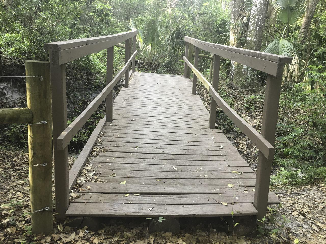 bridge through the woods Bridge Forest Hiking Nature Outdoors Path Trail Tree Walkway Wood Wood - Material