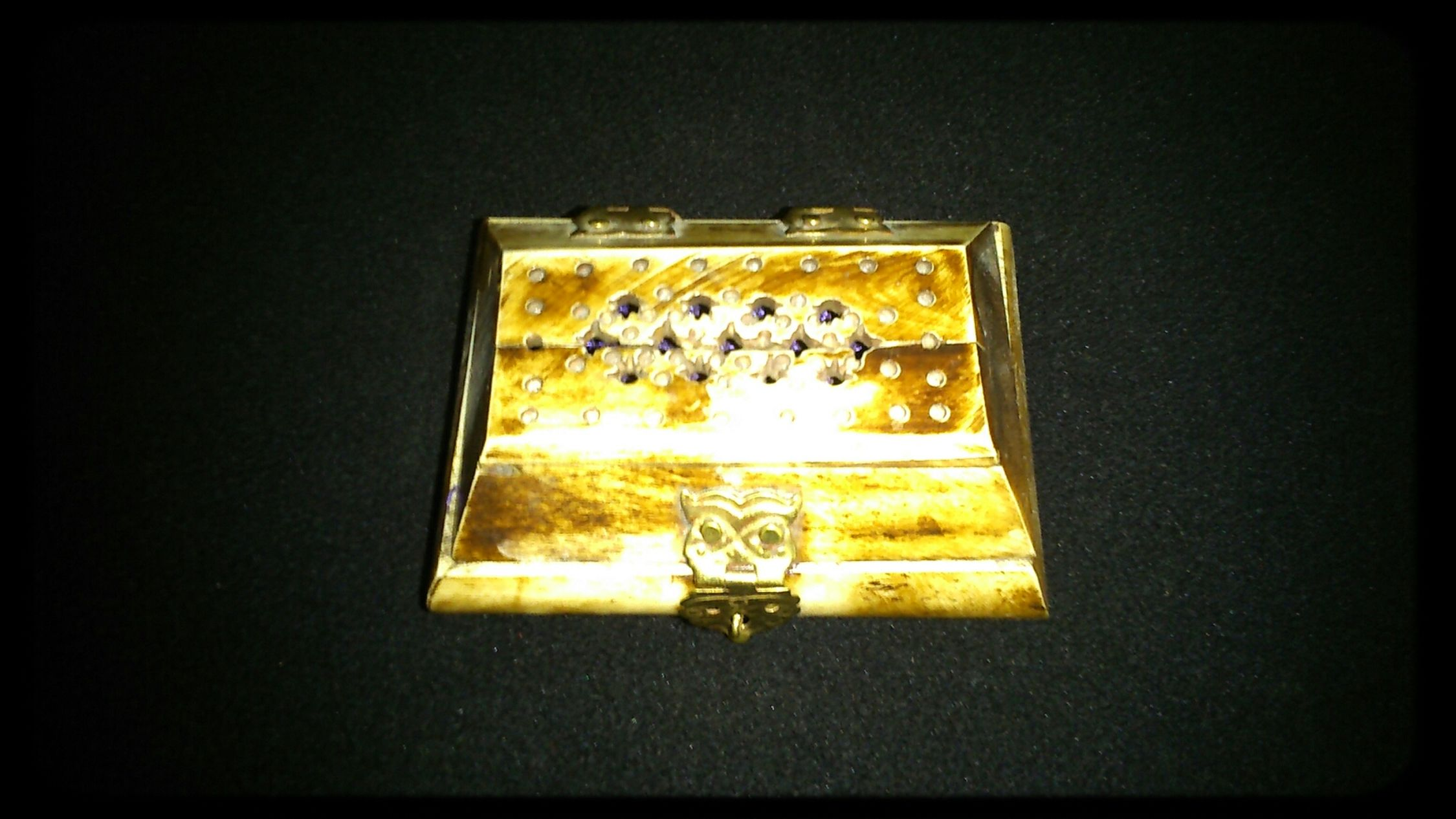 a Jewelery Box made from Camel Bone Hello World Check This Out