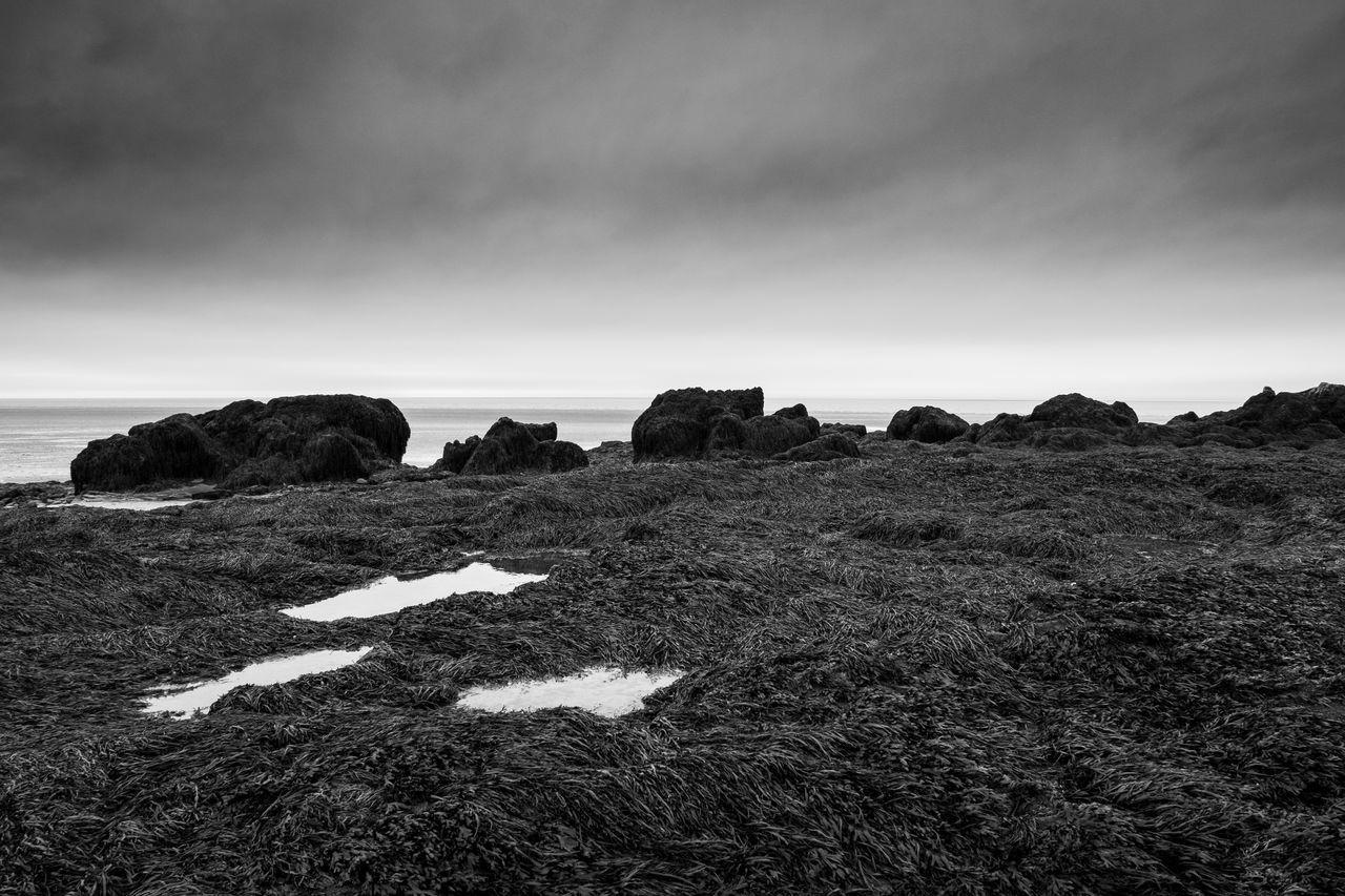 idmphotographer.com Beach Beauty In Nature Cloud - Sky Coastline Cumbria Day Daydreaming Dramatic Landscape Dramatic Sky Heysham Coast Horizon Over Water Landscape Light Natural Light Nature No People Outdoors Sand Scenics Sea Sky Tranquil Scene Tranquility
