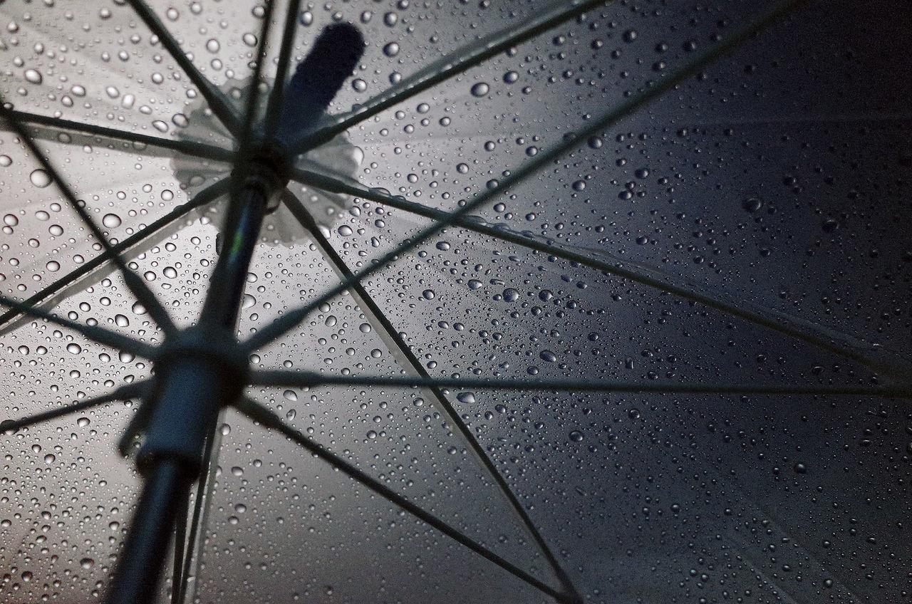 Low Angle Shot Of Umbrella