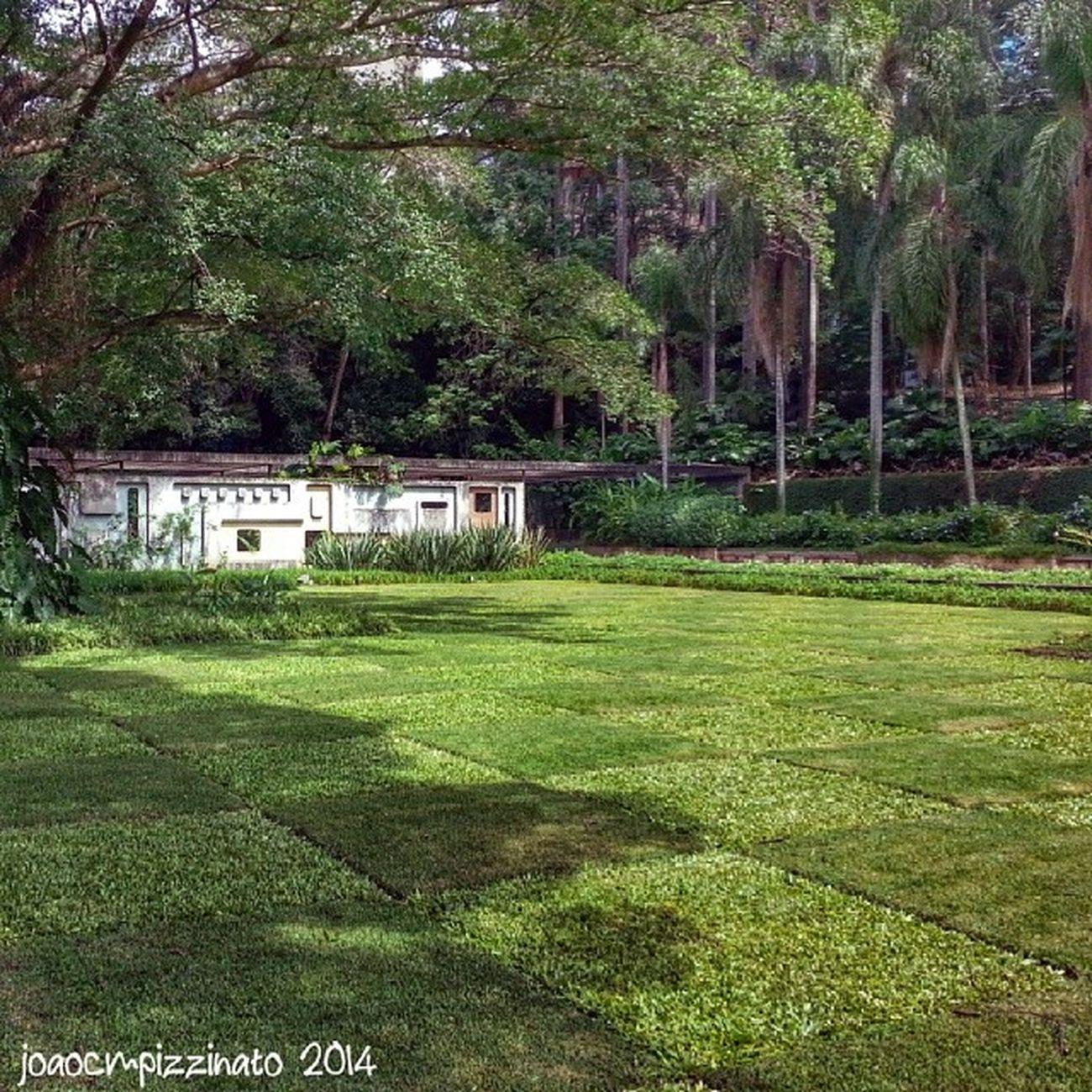 Parque Burle Marx. Art Nature Colors City zonasul saopaulo brasil photography burlemarx