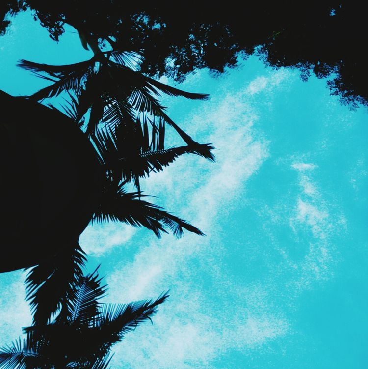 Appreciate The Little Things In Life Awanbiru Hello EyeEm✌ Goodnight ♡