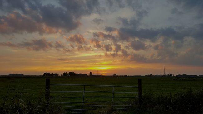 Sunset Sunset_collection Landscape Sonnenuntergang ❤ Beauty In Nature Sonnenuntergang Sunset Silhouettes Cloud - Sky Cloud Sky Nature Field Tor Gatter Eiderstedt
