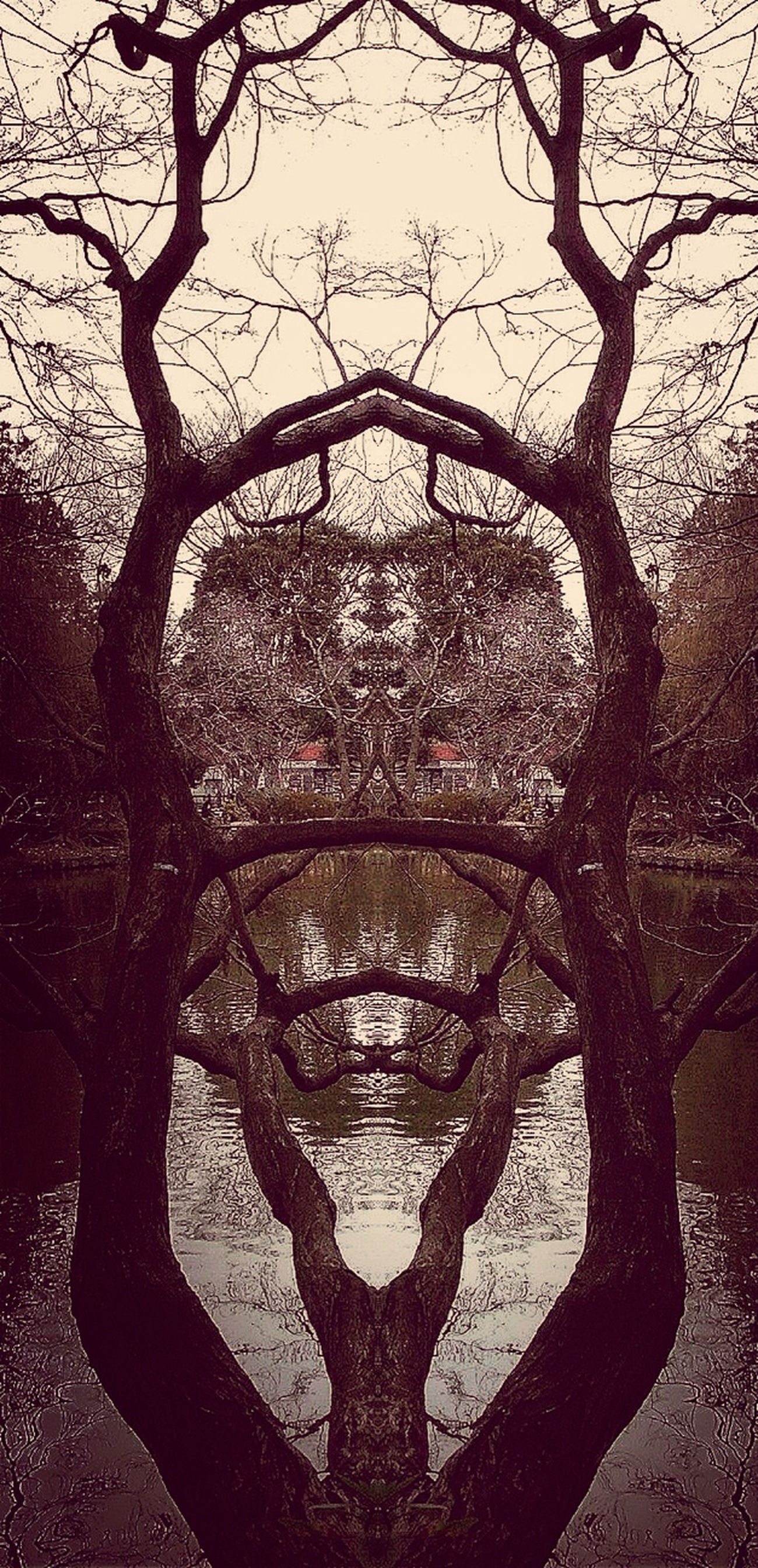 Reflection
